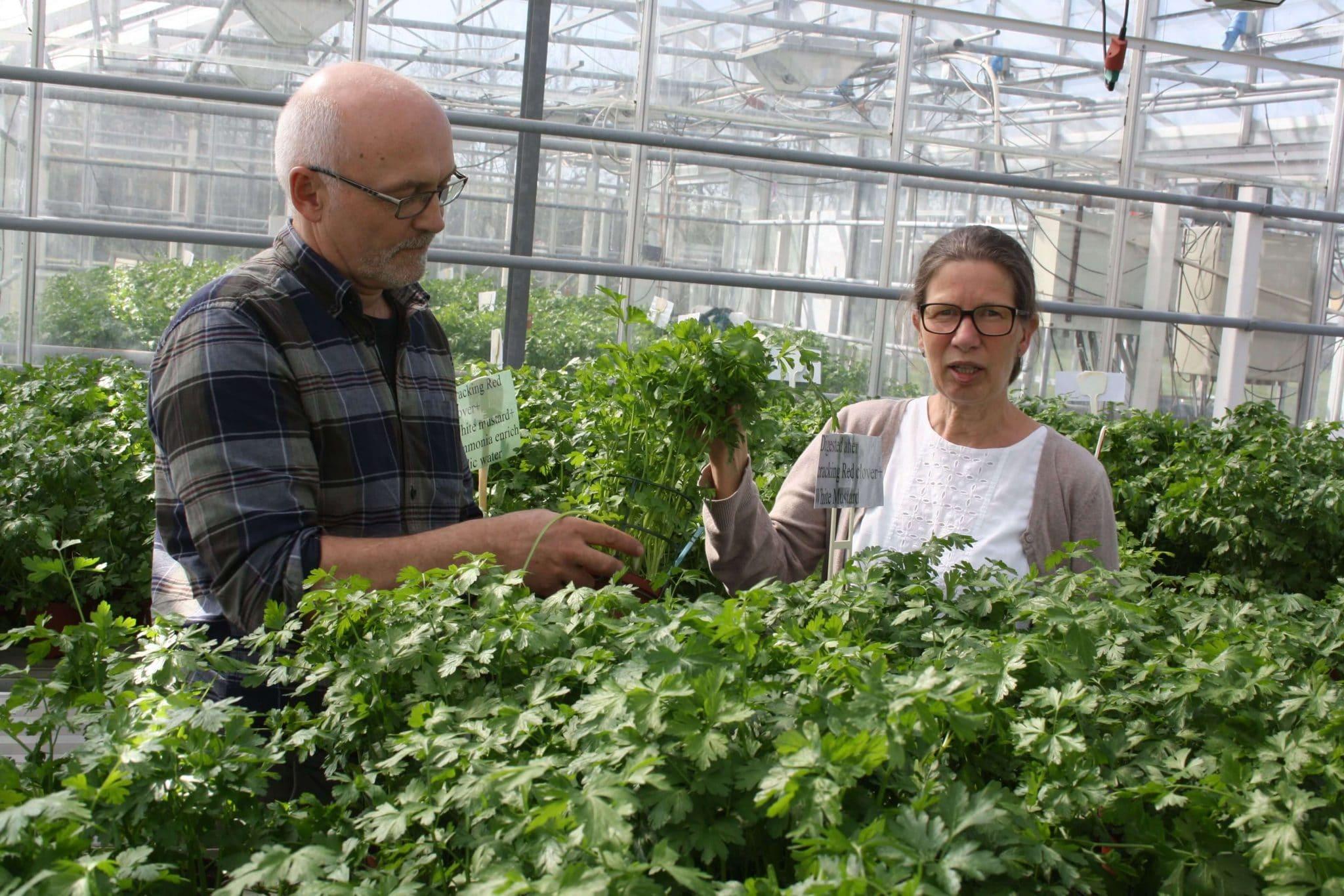 Senior forsker v. AAUKaren K. Petersen Med direktør Carsten Jacobsen